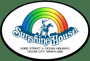 Rainbow Horse Sticker